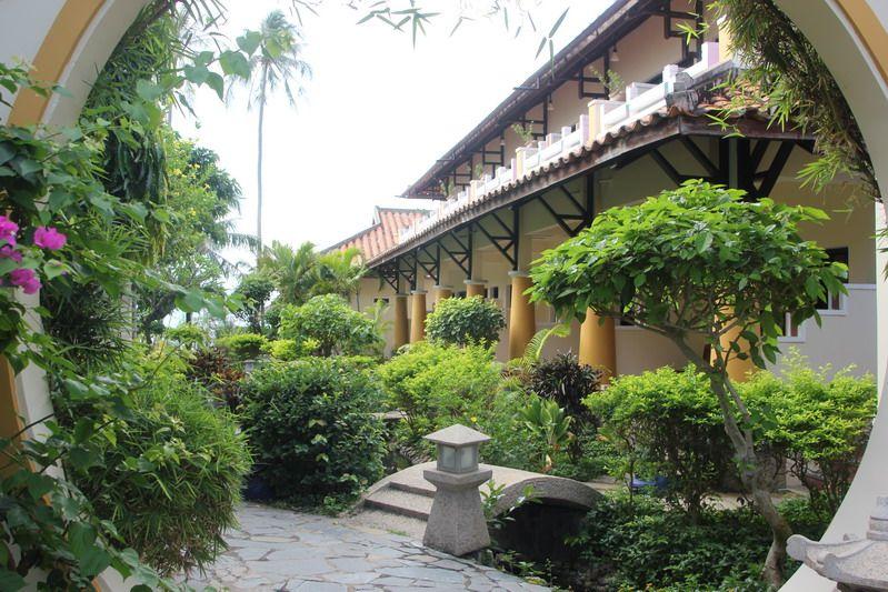 Dynasty Hoang Treu