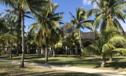 Paradis Beachcomber Golf Resort