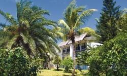 RIU Creole