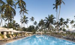 Dream of Zanzibar