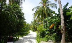 Furaveri Island Resort