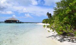 Maledivy 2018 Cocoon
