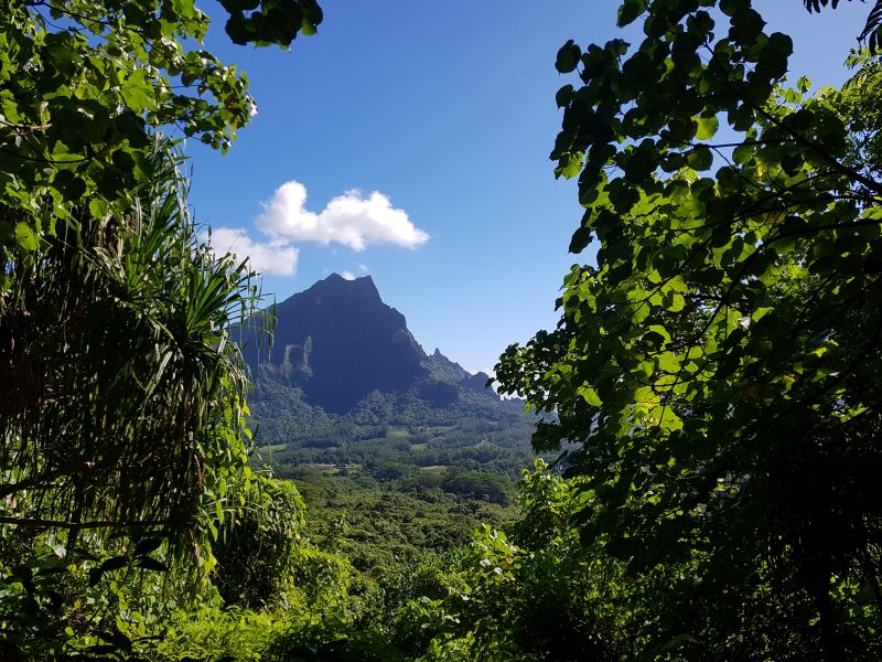 Francouzská Polynésie – Moorea
