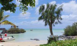 Mauritius s Attitude